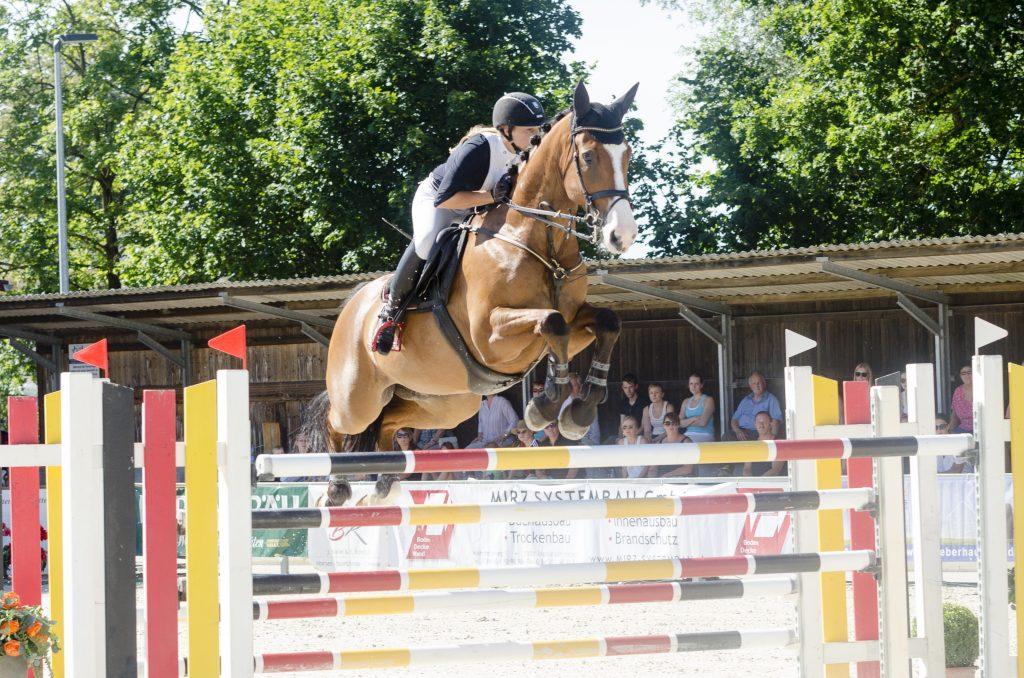 Reiterin und Pferd über Sprung