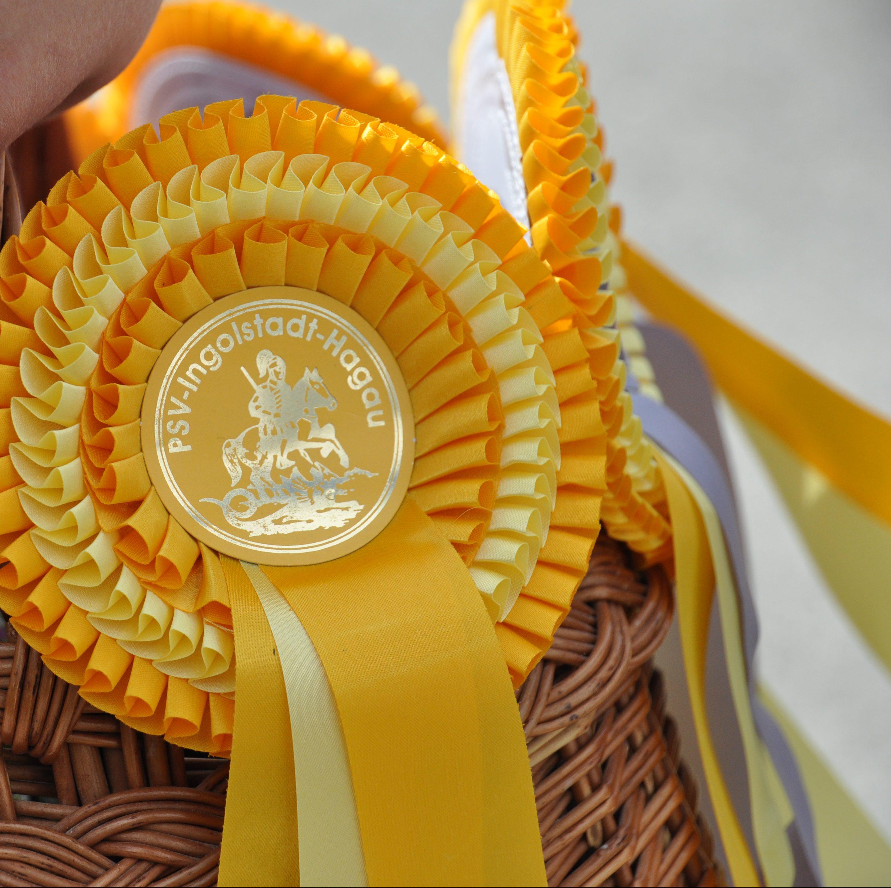 Detailaufnahme goldene Siegerschleife Reitertage Ingolstadt-Hagau