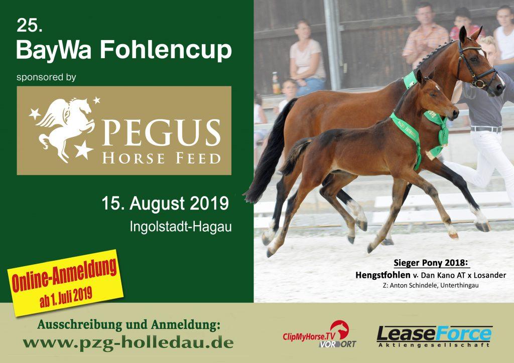 Plakat für Fohlencup der PZG Holledau mit Abbildung Stute und Siegerfohlen Pony 2018